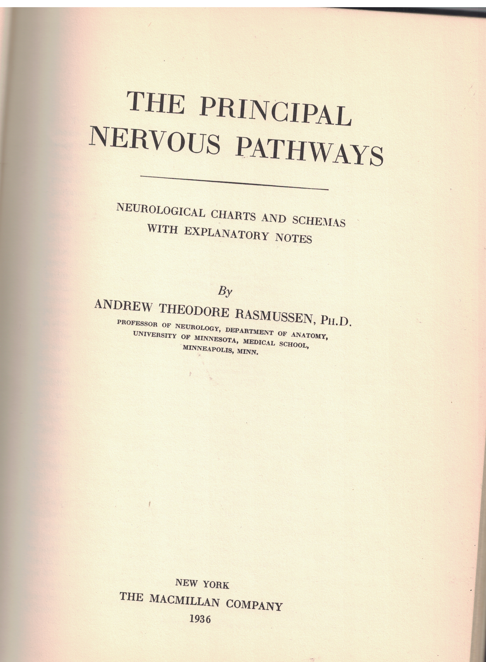 The Principal Nervous Pathways Neurological Charts And Schemas